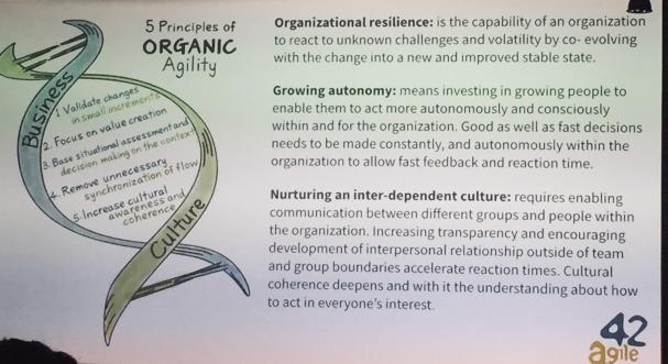 resiliente-organisationen